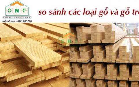 So sánh vật liệu tre và gỗ